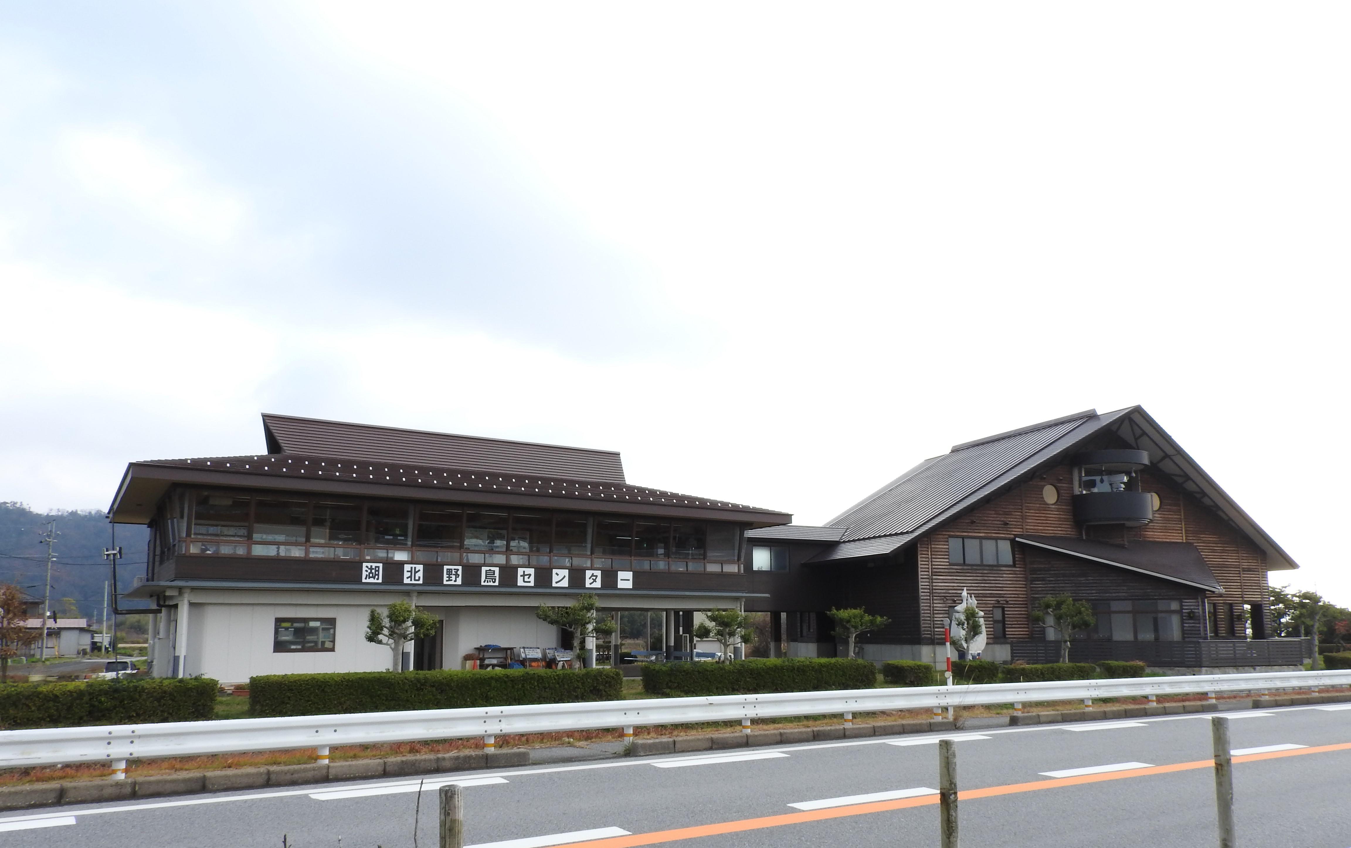 biwako_010.jpg